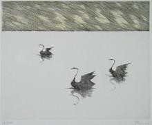 Paul Flora - Drei schwarze Schwäne