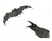 Paul Flora Radierung Rabe und Fledermaus