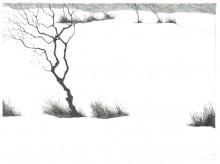 Paul Flora Lithographie Wintergestrüpp