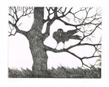 Paul Flora - Rabe im Baum