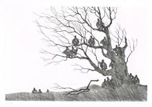 Paul Flora - Dreizehn Unglücksraben im Baum